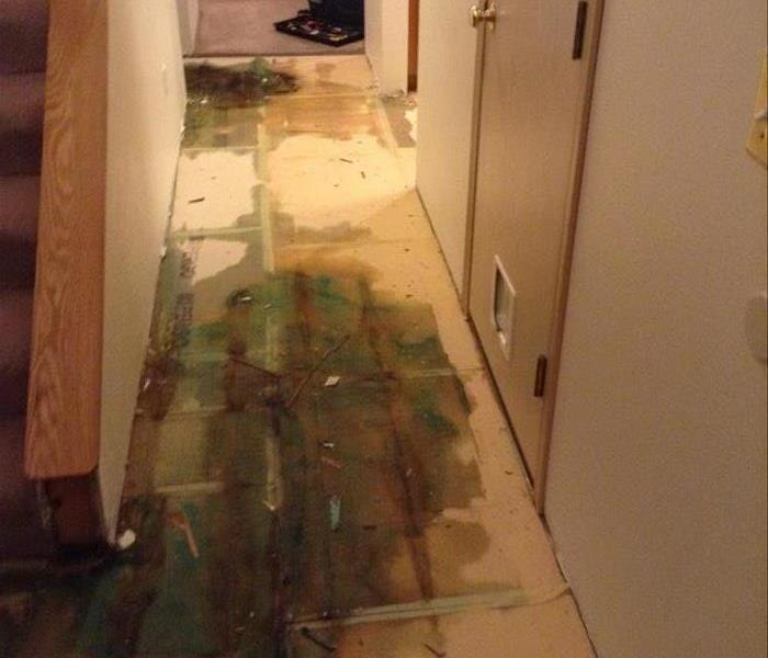 Water Damage in Lacey,  Before