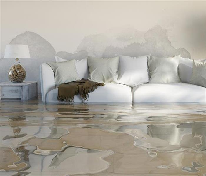 living room with furniture flooded