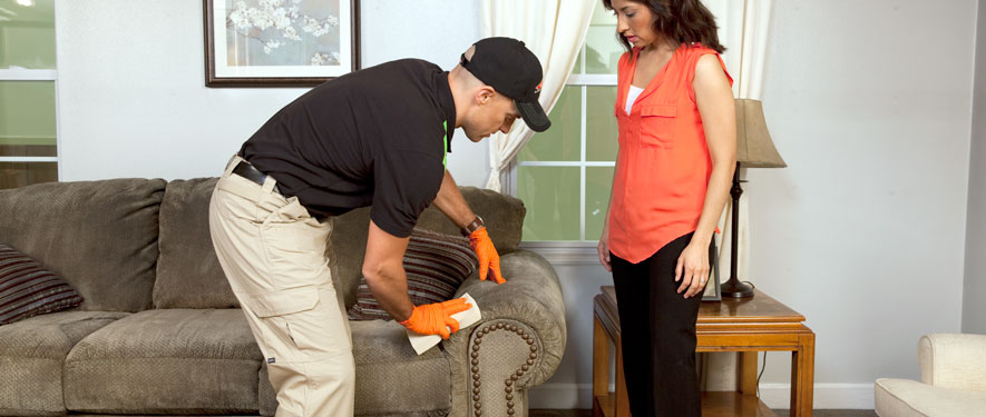 Tacoma, WA carpet upholstery cleaning