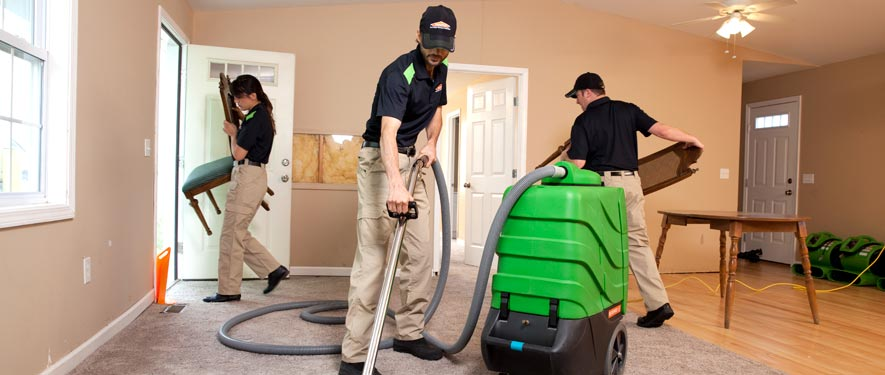 Tacoma, WA cleaning services